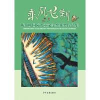 乘风飞翔――陈伯吹国际儿童文学奖获奖作品集