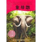 动物小说大王沈石溪.品藏书系:象母怨