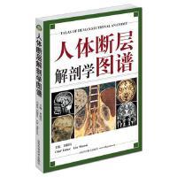 人体断层解剖学图谱 刘树伟 CT人体断层局部解剖影像学 学习参考教程教材畅销书籍 山东科学技术出版社
