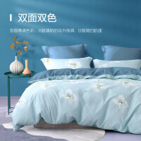 水星家纺 亲肤全棉四件套印花纯棉透气床单被罩居家床上用品 汐若初见