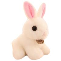小白免毛绒玩具 可爱兔兔毛绒玩具小白兔公仔儿童生日礼物送女生 白色 礼品袋包装 坐高20厘米