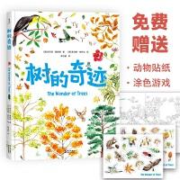 树的奇迹(很大很大的科普绘本,探索树的181个小秘密,满足孩子所有好奇心,给3-6岁孩子的第一本自然小百科)