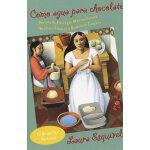 西班牙语原版 恰似水之于巧克力 电影《巧克力情人》原著 墨西哥畅销书 Como Agua Para Chocolate