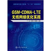 GSM-CDMA-LTE无线网络优化实践 网络配置与管理 无线网络优化教程 通信工程专业教材 通信工程师培训资料 丁远