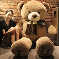 围巾熊泰迪熊公仔抱抱熊大熊布娃娃玩偶毛绒玩具生日礼物女生定制