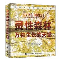 灵性森林 万物生长的天堂