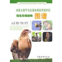 全新正品内蒙古赛罕乌拉自然保护区陆生脊椎动物图谱 鲍伟东 中国林业出版社 9787503858727 缘为书来图书专营