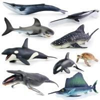 20190515140128059仿真动物海洋生物模型虎鲸大白鲨鱼玩具海龟海豚鲸鱼儿童玩具男孩