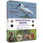 深圳常见野生动物观察手册