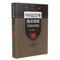 预售【RT6】中国司法会计师执业准则(专家拟制稿) 于朝,庞建兵 中国检察出版社 9787510210808