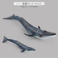 海洋生物模型动物玩具模型儿童仿真企鹅海豚大白鲨巨齿鲨鲨鱼海龟螃蟹早教认识玩具 乳白色 117-蓝鲸