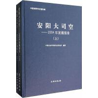 安阳大司空――2004年发掘报告(上、下册)