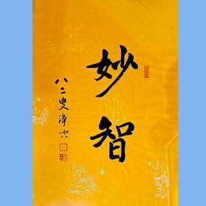 澳洲净宗学院院长,香港佛陀教育协会董事主席净空(妙智)