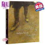 【中商原版】安德鲁 怀斯 英文原版 Andrew Wyeth