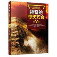 正版图书-FLY-神奇的惊天巧合V 9787563950287 北京工业大学出版社 知礼图书专营店