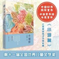 小翅膀(2018年度中国好书,中国童书榜年度童书)