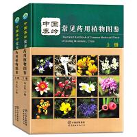 全2册中国秦岭常见药用植物图鉴 上下册精装版植物学中药学系列丛书 天然药用植物资源研究方面的新成果和新发现 药用植物学