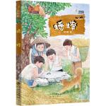 蟋蟀 新中国原创儿童文学代表作家任大霖作品,作品被翻译成多种语言出版,含小学语文教科书必读书目(金钥匙儿童文学大系)