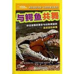 美国国家地理.动物故事会系列 与鳄鱼共舞