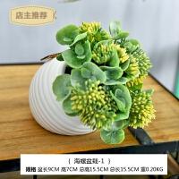 家用仿真多肉植物小盆景假花盆栽家居客厅室内绿植桌面装饰花套装摆件SN2692