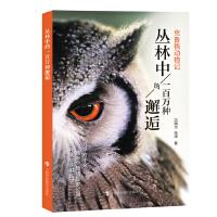 丛林中的一百万种邂逅:克鲁格动物记