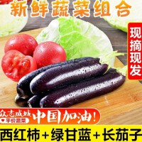 【包邮】广西茄子西红柿卷心菜5斤装 新鲜蔬菜 生鲜时蔬