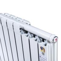 采暖片 太阳花暖气片家用水暖铜铝复合散热片集暖自采暖壁挂式取暖器 【铜铝复合款】:60*75
