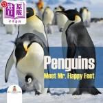 【中商海外直订】Penguins - Meet Mr. Flappy Feet