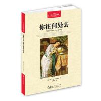 世界文学名著典藏(精装) 你往何处去 (波) 亨里克・显克维奇著 9787535464873 长江文艺出版社