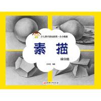 小小画家 素描 综合篇 出版社:江西美术出版社 江西美术出版社【新华书店 品质保证】