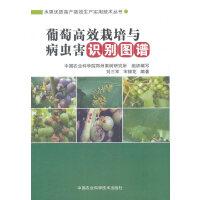 葡萄高效栽培与病虫害识别图谱