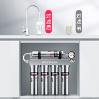 德国德克西净水器家用直饮自来水龙头前置过滤器厨房不锈钢净水机