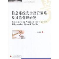 信息系统安全投资策略及风险管理研究(电子书)