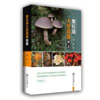黑石顶大型真菌图志