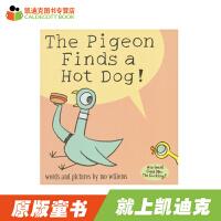 #原装进口 The Pigeon Finds a Hot Dog! 凯奖得主Mo Willems经典作品 鸽子系列之鸽
