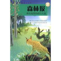 森林报 神出鬼没的夜行大盗:夏(彩色版) [苏] 比安基,王汶 二十一世纪出版社