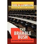 【预订】The Bramble Bush: On Our Law and Its Study