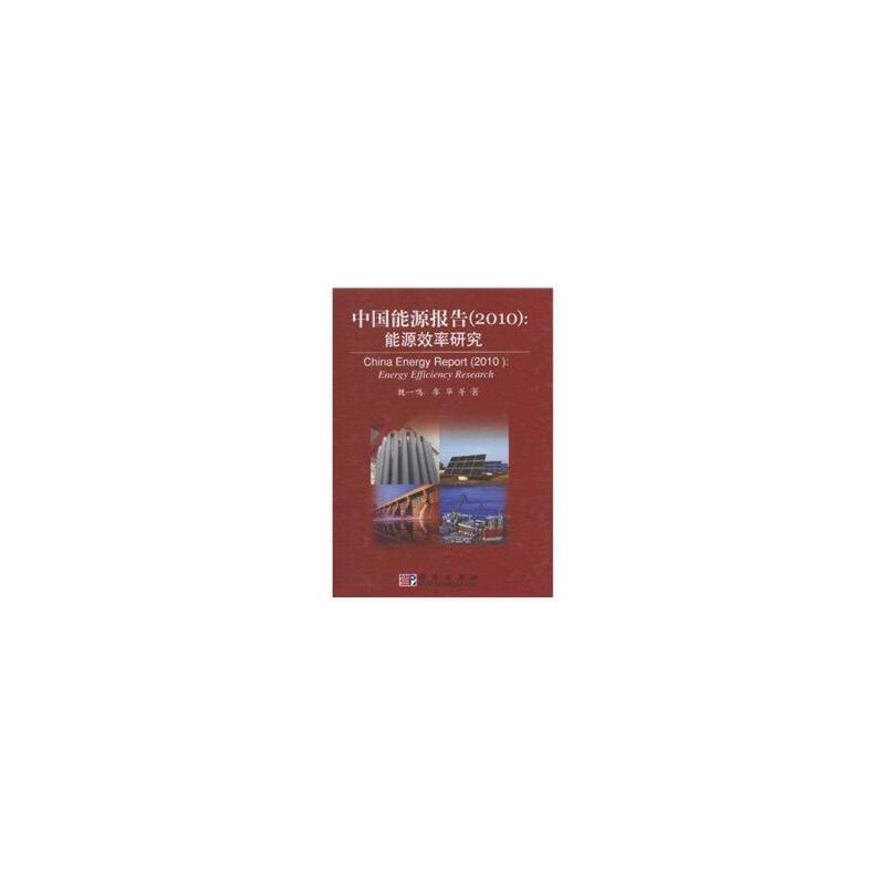 中国能源报告(2010)——能源效率研究 魏一鸣,廖华 科学出版社 【正版书籍 闪电发货 新华书店】
