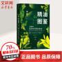 新精油图鉴:300种精油科研新知集成 中信出版社