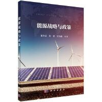 能源战略与政策