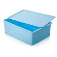 内衣收纳盒袜子抽屉整理箱内衣收纳 有盖收纳盒 塑料收纳箱