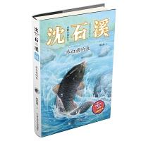 动物小说大王沈石溪・注音读本:举白旗的鱼
