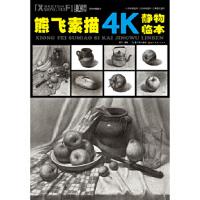 熊飞素描4K静物临本 熊飞 湖北美术出版社【新华书店 正版放心购】