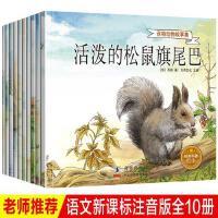 10本 西顿动物记 儿童绘本故事书6-7岁注音版经典科普绘本 小学生一二三年级课外阅读书籍西顿野生动物小说全集