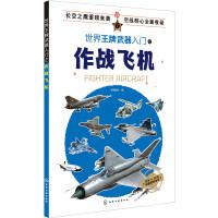 世界王牌武器入门之作战飞机