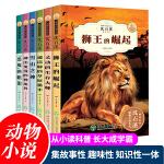 动物小说大王沈石溪精读系列 全套6册