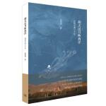 胡天汉月映西洋:丝路沧桑三千年(2017年中国好书奖得主张国刚新作,一带一路推荐读物)