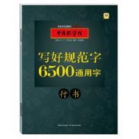 6500通用字:行书(货号:A2) 张鹏涛 9787556417025 湖北教育出版社威尔文化图书专营店