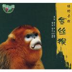 绿野寻踪―* 雍严格,雍立军,曹庆著 中国林业出版社