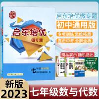 新版2021启东培优微专题七年级数与代数练习册龙门书局